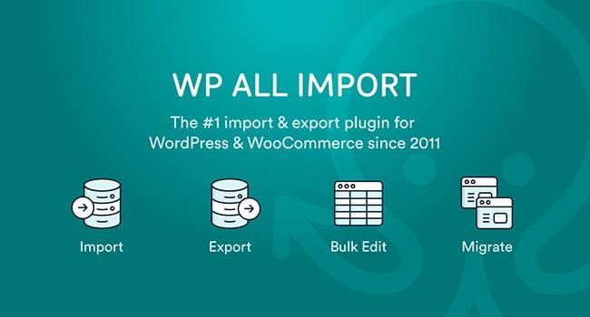 WP All Import Plugin Backup WordPress Terbaik (TOP 10)
